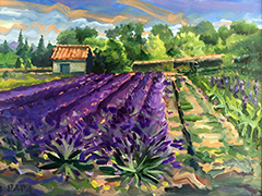 Lavender Field at St. Remy 2015